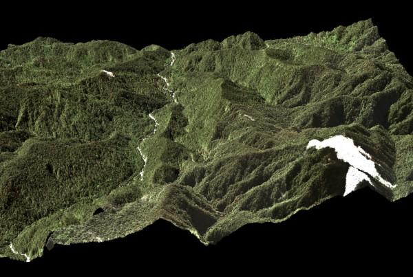 CAO-Submontane-Kosnipata-Peru-DSM-RGB-2